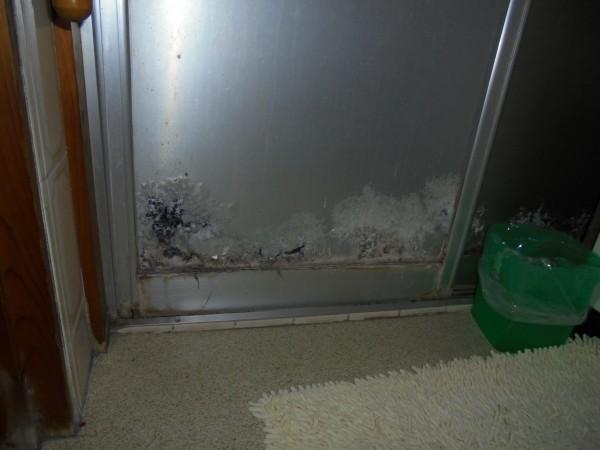 風呂 ドアのパネル交換 和歌山市4