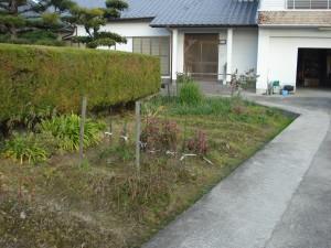 イブキの生垣を撤去して庭の改修 明るい庭になりました。8