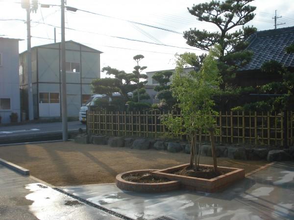 イブキの生垣を撤去して庭の改修 明るい庭になりました。1