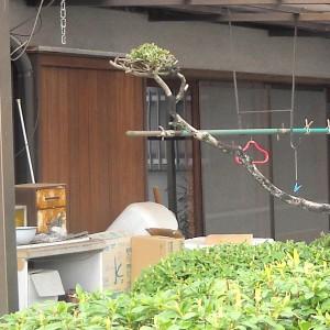 掃き出し窓リフォーム 和歌山市2