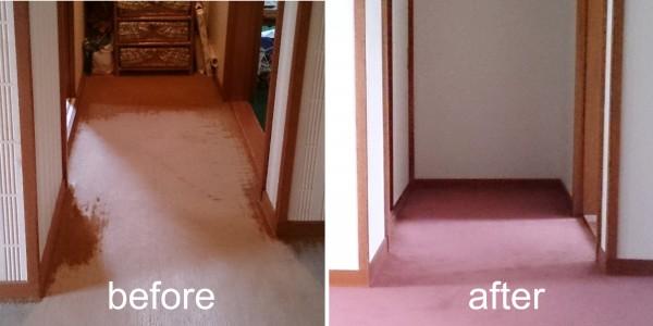 クロス・カーペット張替え Before & After1